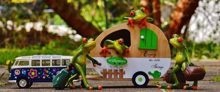 frogs-1358815_1920